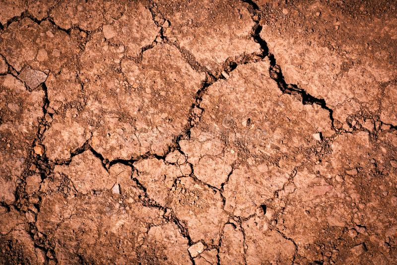 Rödaktig brun jord med sprickor arkivfoton