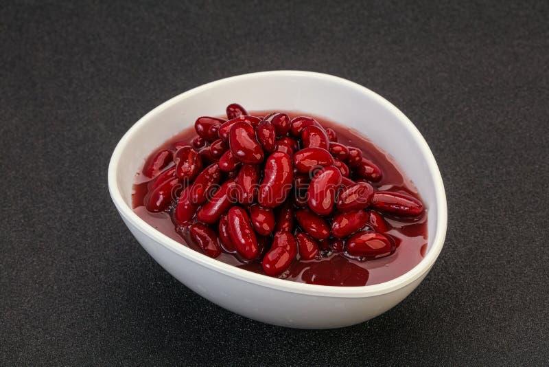 Rödbakad njure i skålen arkivfoton