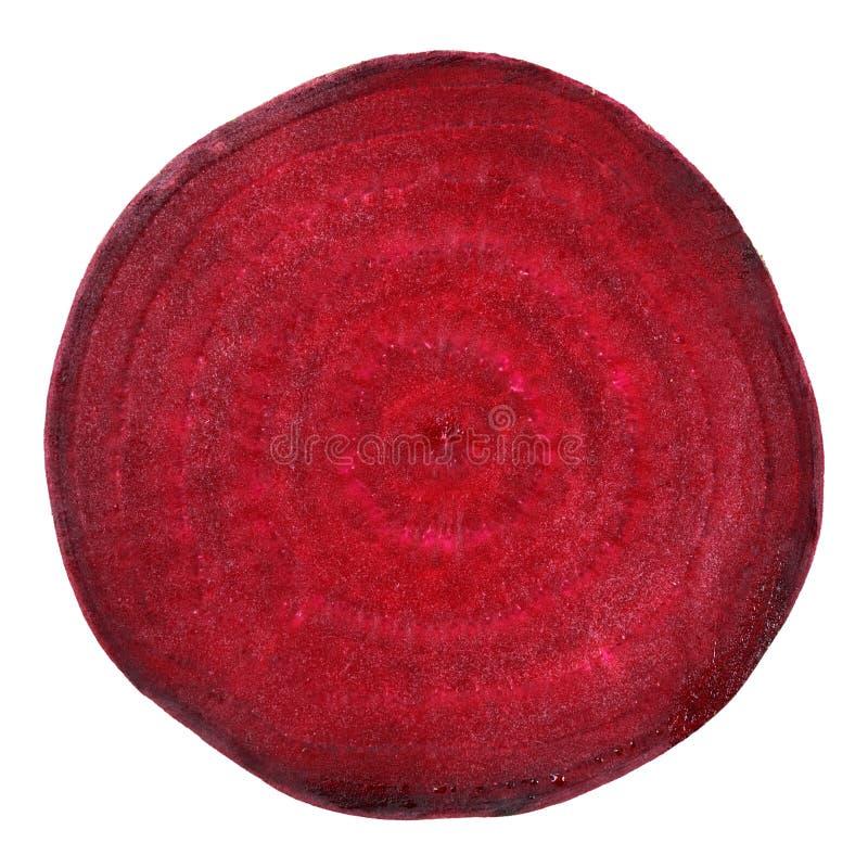 Rödbeta arkivbild