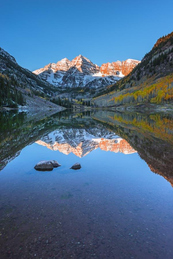Rödbrun Klockor soluppgång Aspen Colorado Vertical Composition reflekterar royaltyfria bilder