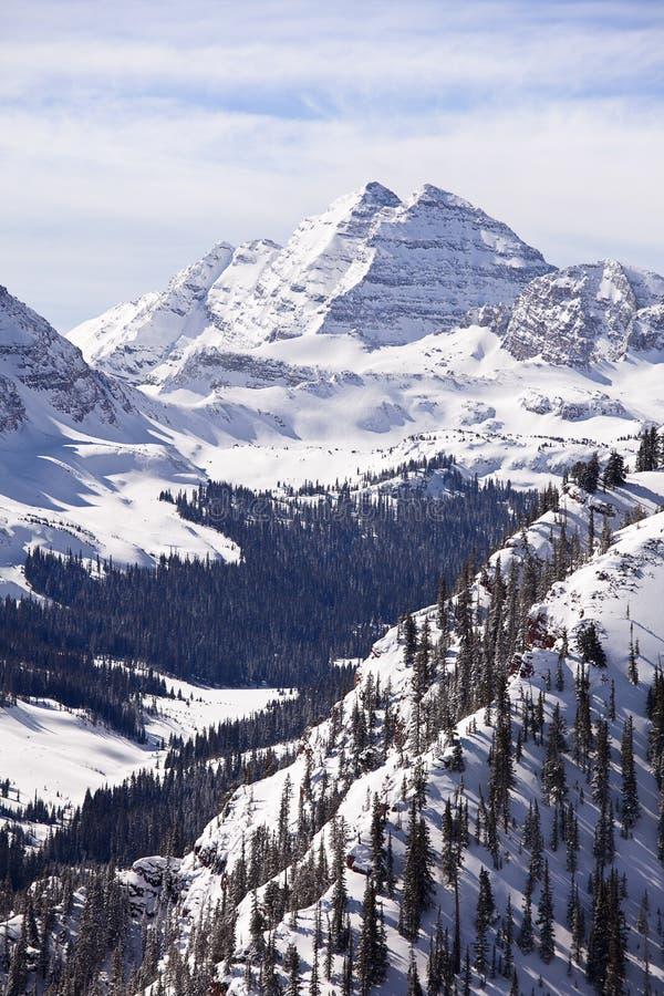 rödbrun snow för klockor arkivfoton