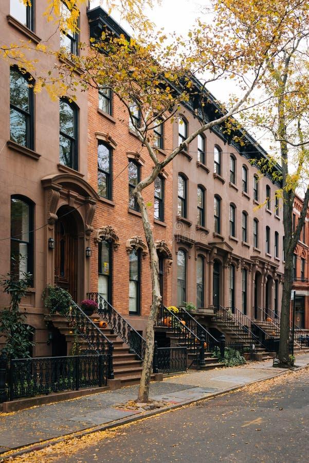 Rödbruna sandstenar och nedgångfärg i Brooklyn Heights, New York City royaltyfri bild