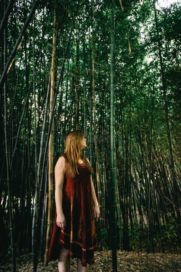 Rödhårig mankvinnaanseende i en bambukoloni arkivbilder