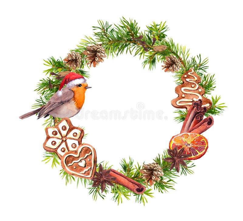 Rödhakefågel i den röda feriehatten, ljust rödbrun kakor, cinamon, apelsin Julkrans med granträdfilialer, kottar nytt år stock illustrationer