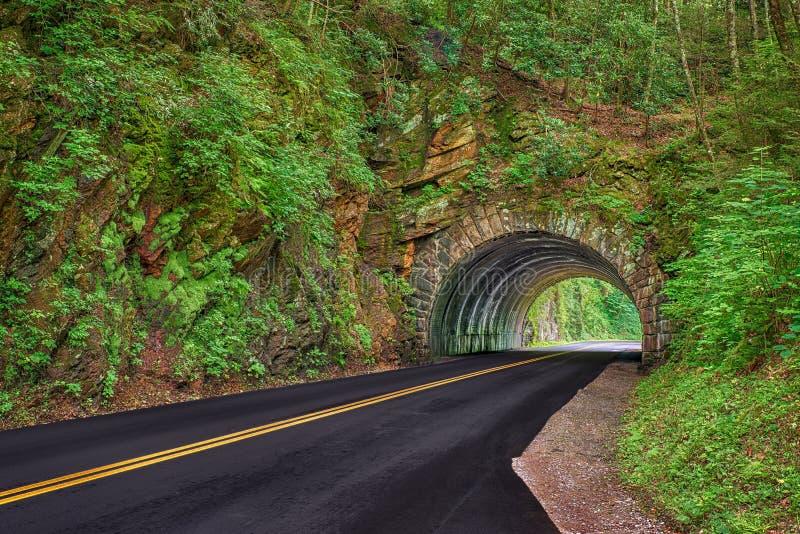 Rökig bergtunnel i vår royaltyfri foto