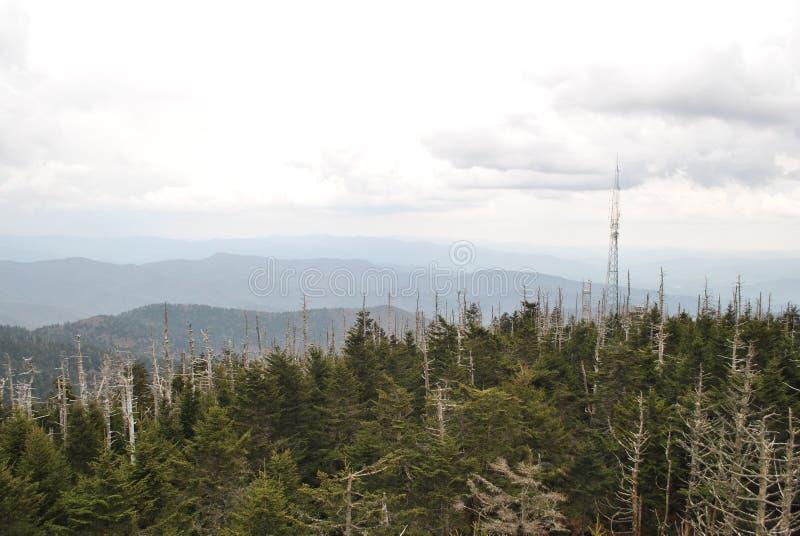 Rökiga berg för Clingmans kupol arkivfoto
