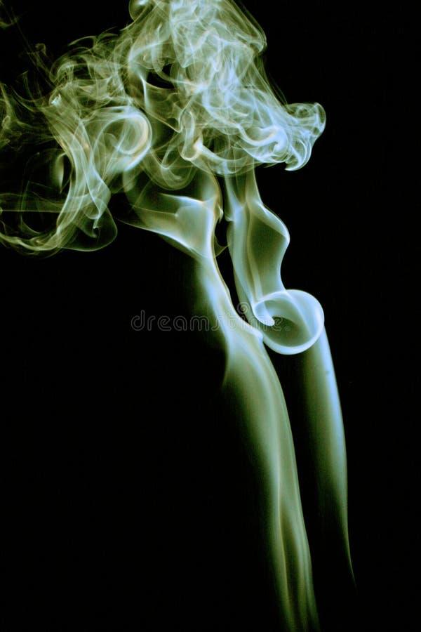 rökwomans arkivbild