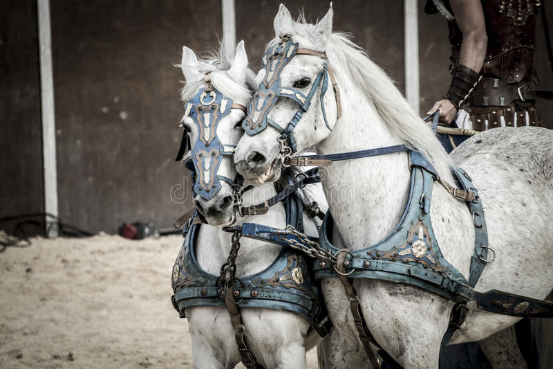 Römerwagen in einem Kampf von Gladiatoren, blutiger Zirkus lizenzfreies stockbild