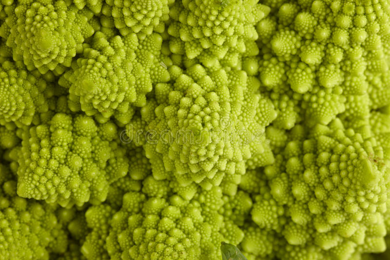 Römischer Brokkoli stockfotografie