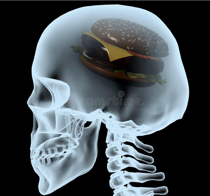 Röntgenstråle av ett huvud med hamburgaren i stället för hjärnan vektor illustrationer