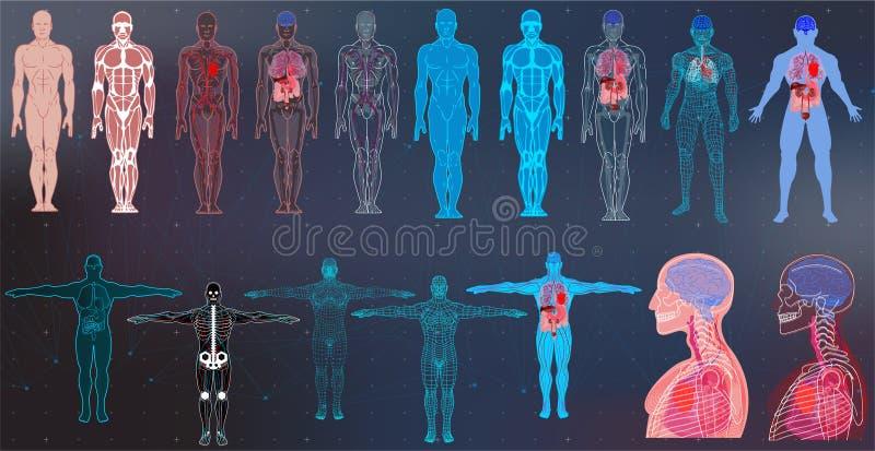 Röntgenstrålekroppsamlingar i futuristisk HUD SCI stil stock illustrationer