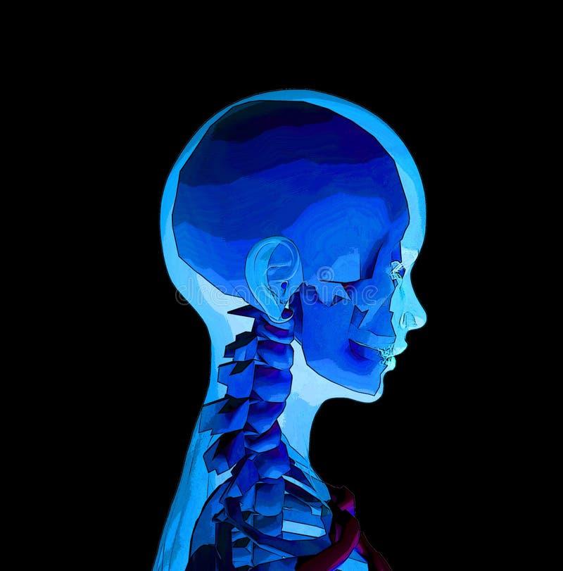 Röntgenstraal 4 stock illustratie