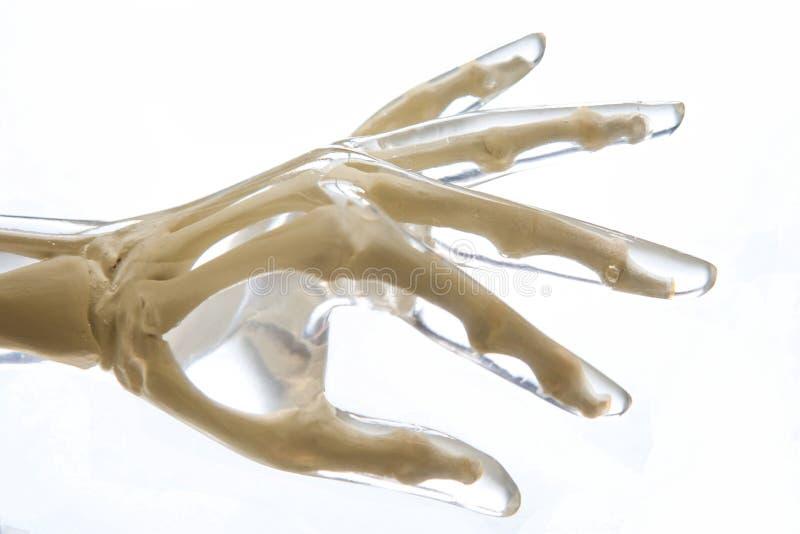 Röntgenstraal Spookhand stock foto's