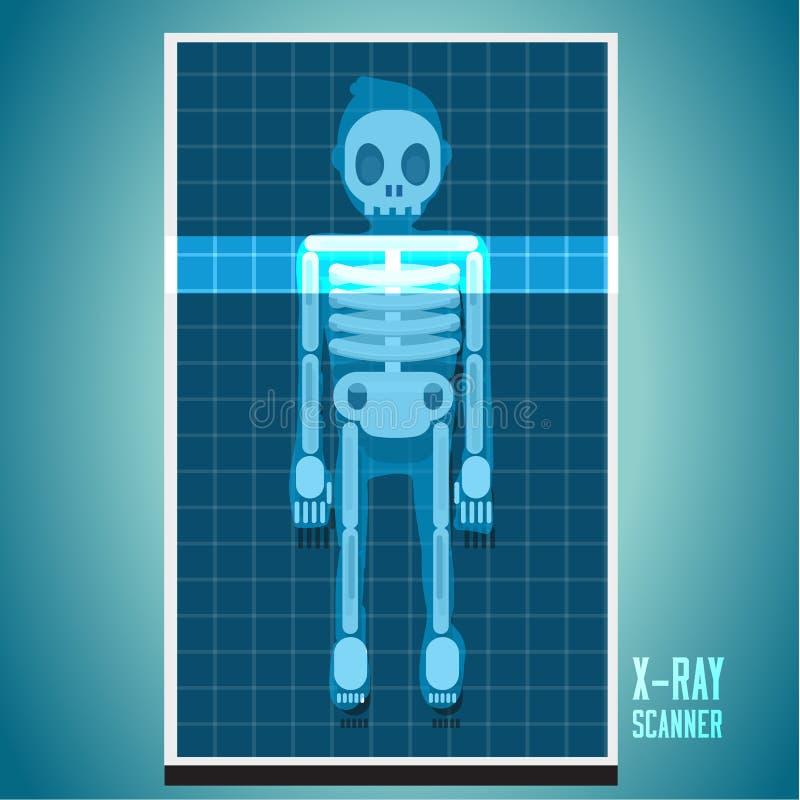 Röntgenstraalaftasten op menselijk lichaam skelet - vector illustratie