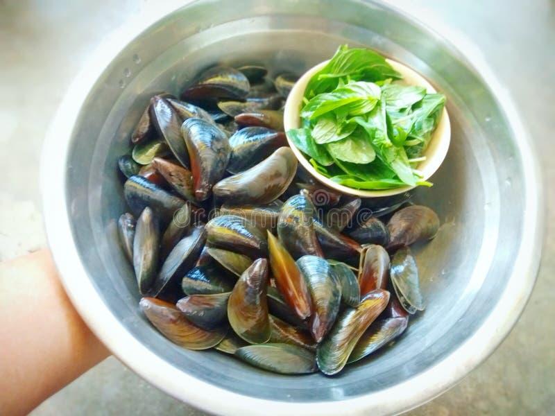 Rör den stekte musslan med vitlök & söt basilika royaltyfria bilder