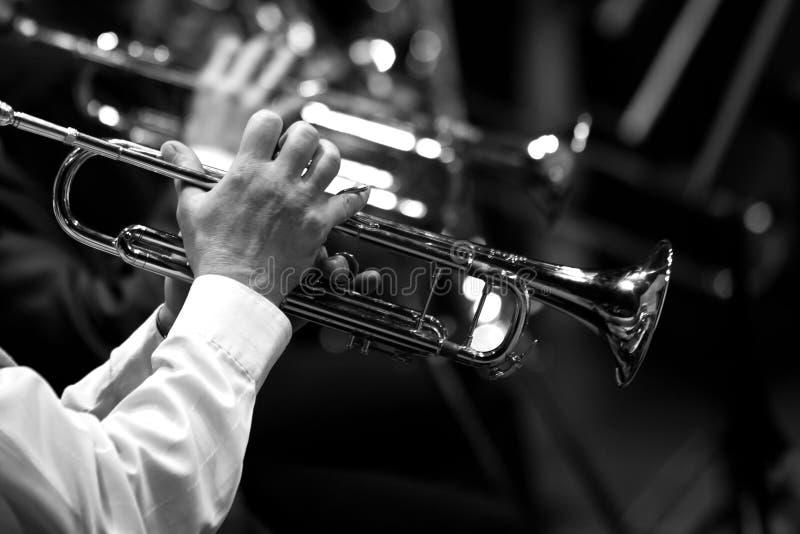 Rör i händerna av musikerna arkivbilder