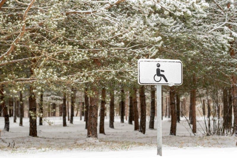 Rörelsehindrad parkering i en vinter parkerar royaltyfri foto