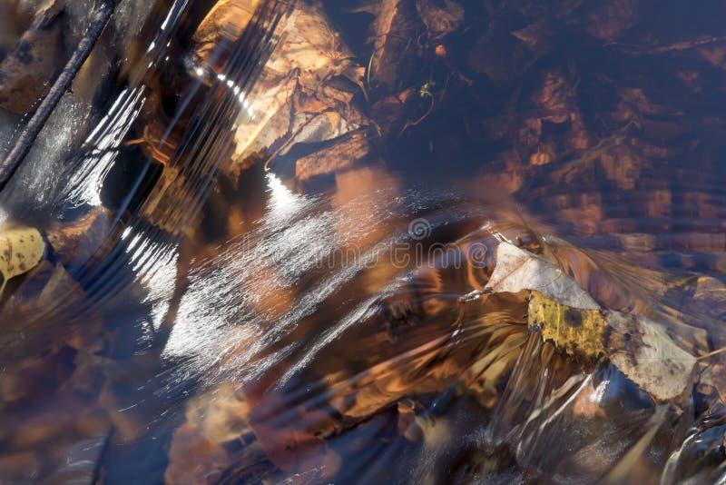 rörelsevatten arkivfoto