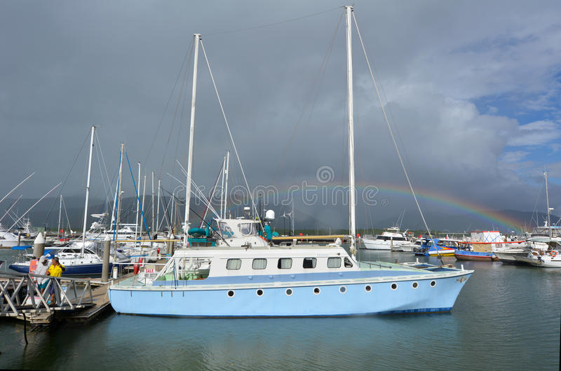 Rösen Marlin Marina I Queensland Australien royaltyfri bild