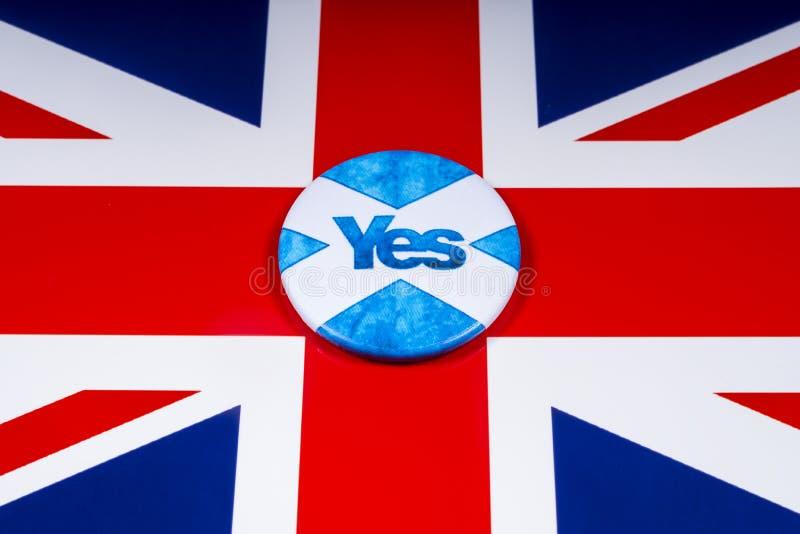 Rösta ja i den skotska självständighetfolkomröstningen royaltyfri foto