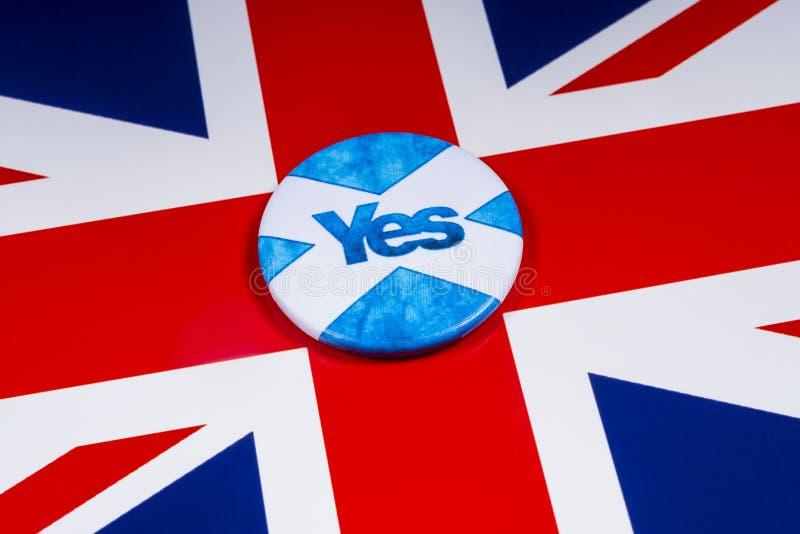 Rösta ja i den skotska självständighetfolkomröstningen royaltyfri bild