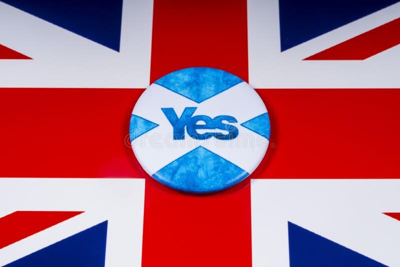 Rösta ja i den skotska självständighetfolkomröstningen royaltyfri fotografi