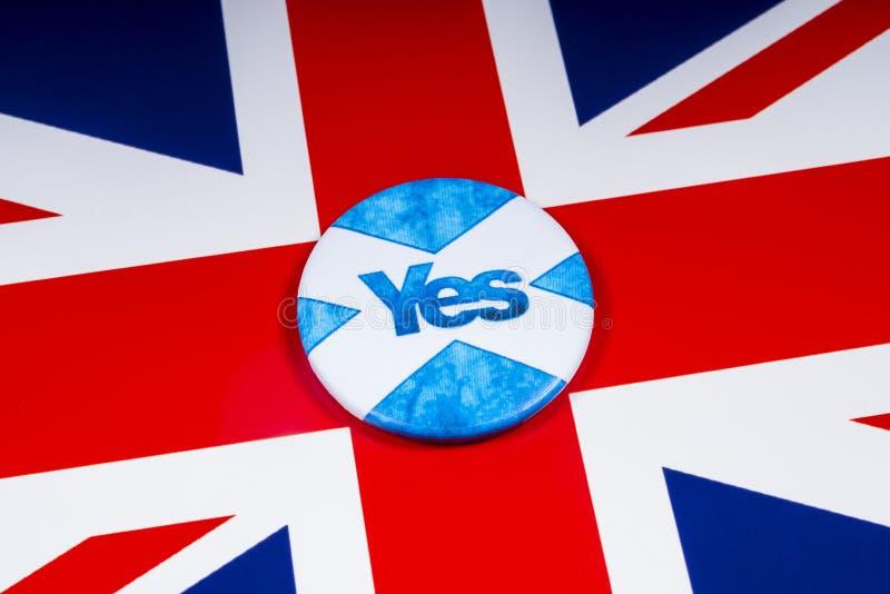 Rösta ja i den skotska självständighetfolkomröstningen royaltyfria foton