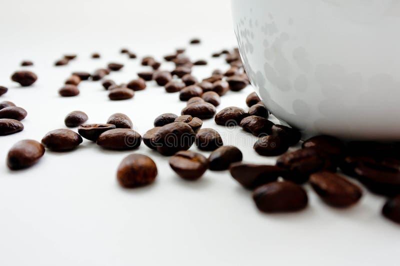 Röstkaffeebohne verbreitet auf Weißrückseitenboden lizenzfreie stockfotografie