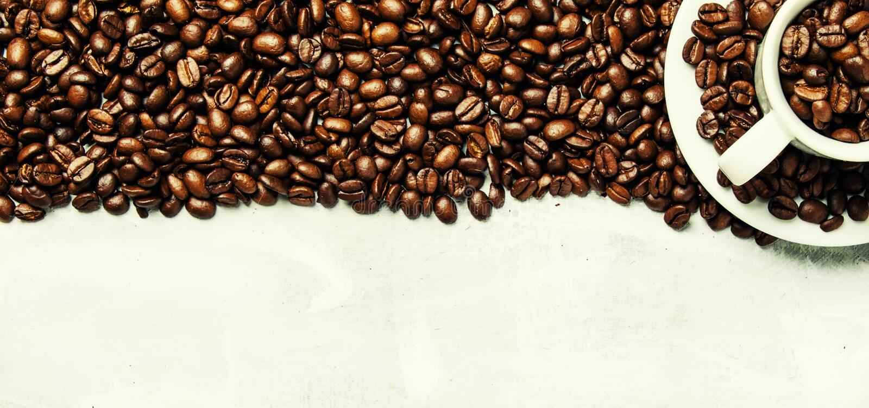 Röstkaffeebohnen in einer weißen Tasse und Untertasse, graues Lebensmittel backgr lizenzfreies stockbild