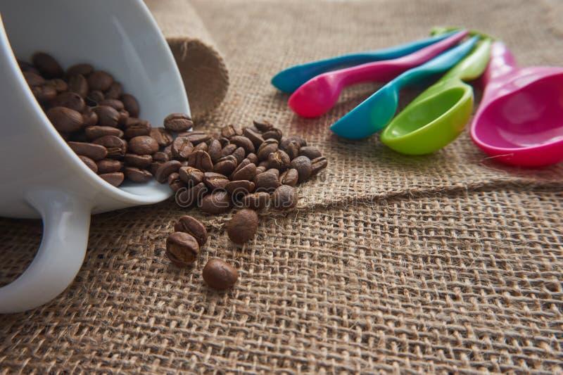 Röstkaffeebohnen, PorzellanKaffeetasse, Messlöffel der Dosis lizenzfreie stockfotos