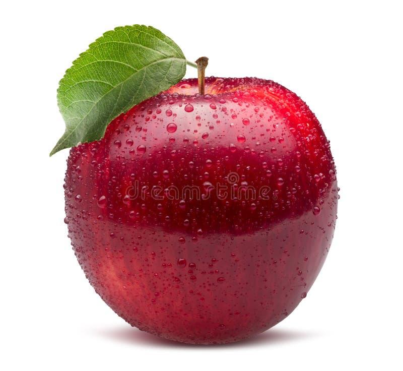 Rött äpple i vattendroppar som isoleras på en vit bakgrund arkivfoton