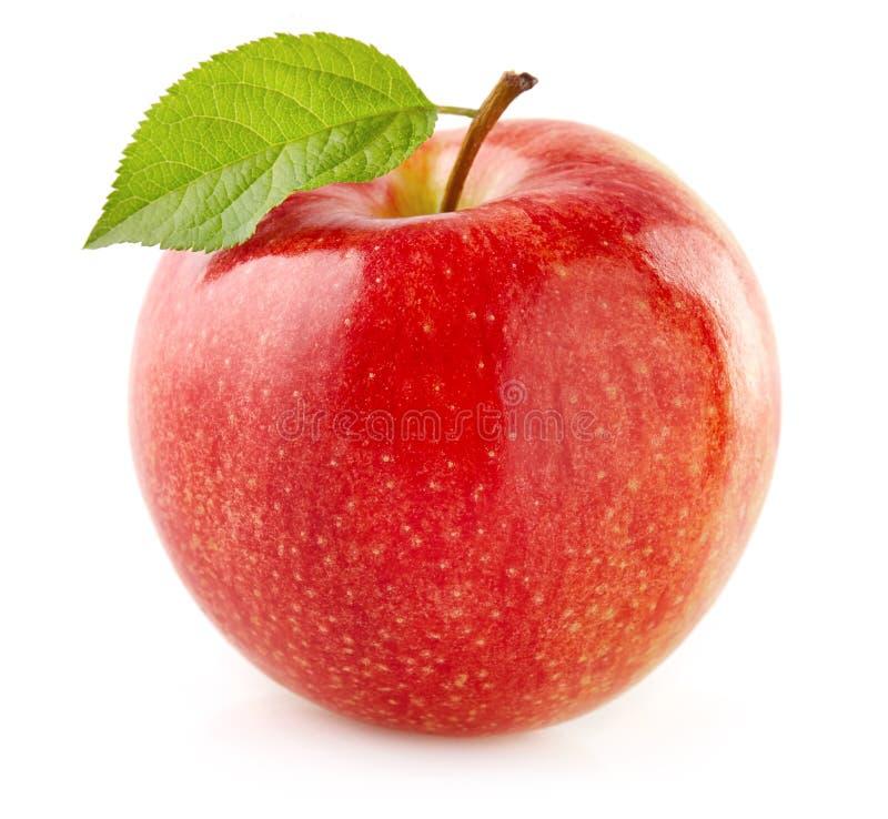 Rött äpple med leafen royaltyfria bilder