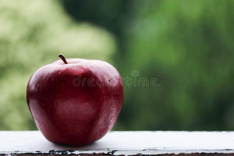 Rött äpple på en grön bakgrund arkivfoto