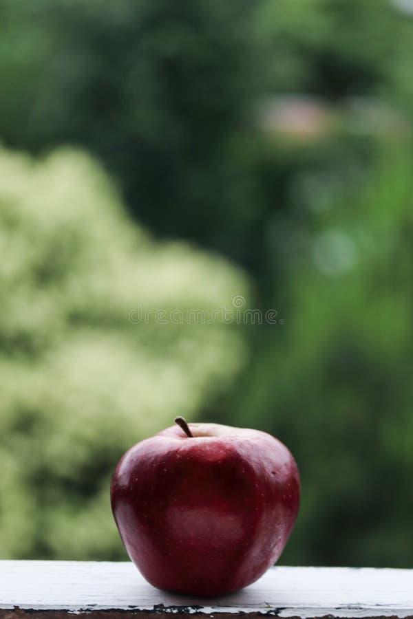 Rött äpple på en grön bakgrund royaltyfri foto