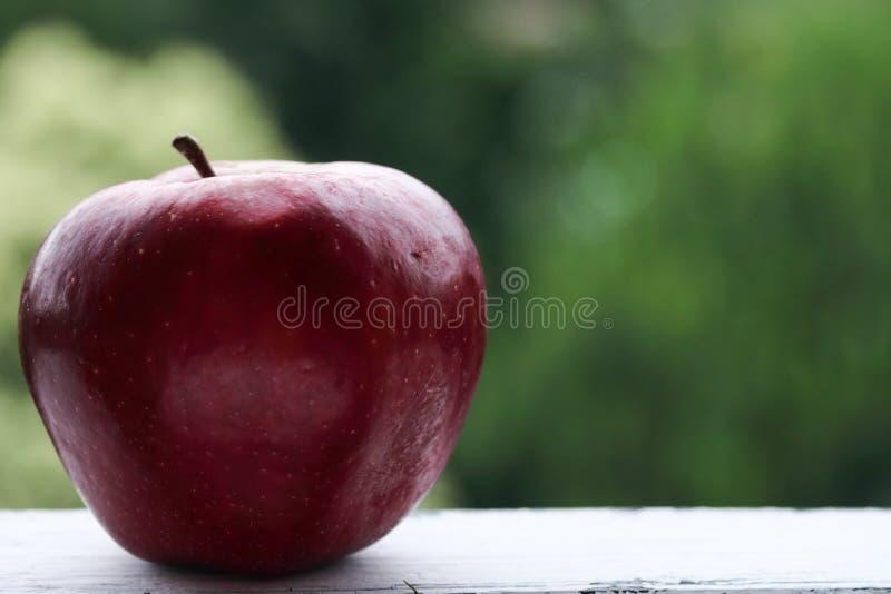 Rött äpple på en grön bakgrund royaltyfri bild