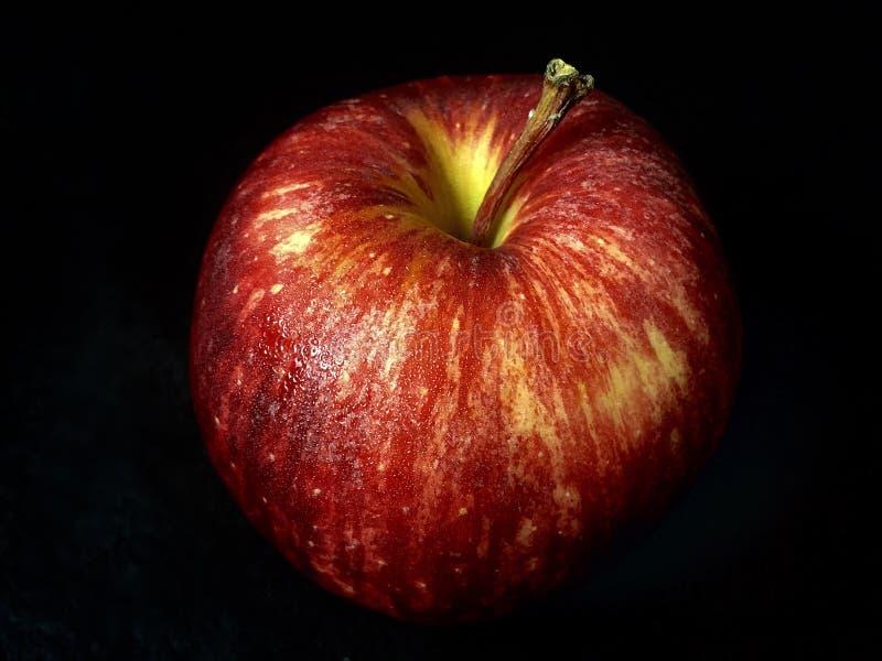 Rött äpple på en svart bakgrund arkivbild