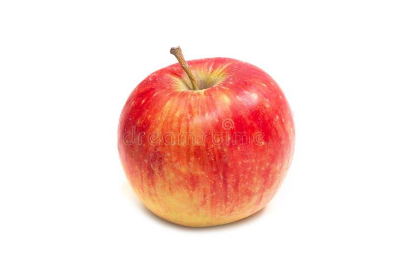 Rött äpple på en vitbakgrund Slapp fokus arkivbild