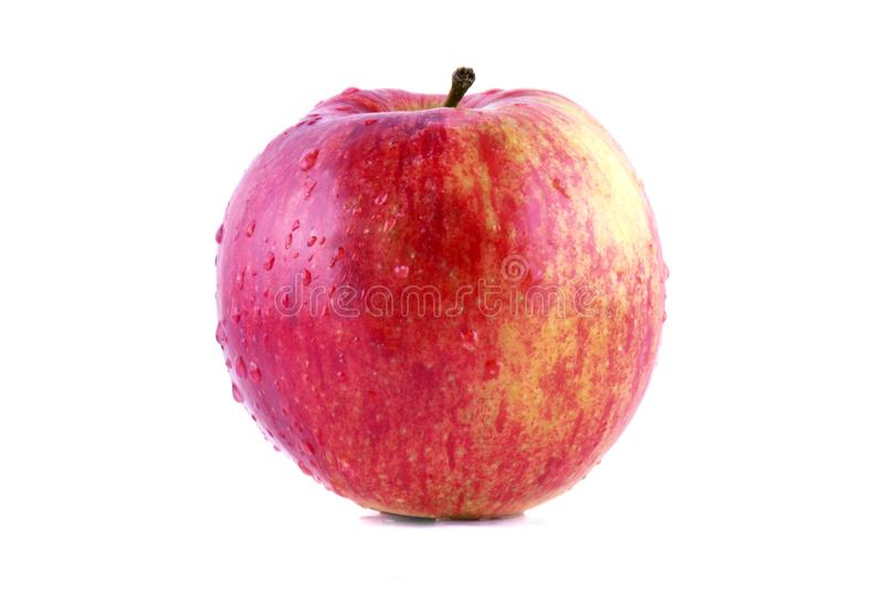 Rött äpple som isoleras på vitbakgrund Ny rå organisk frukt med vattendroppar royaltyfri fotografi