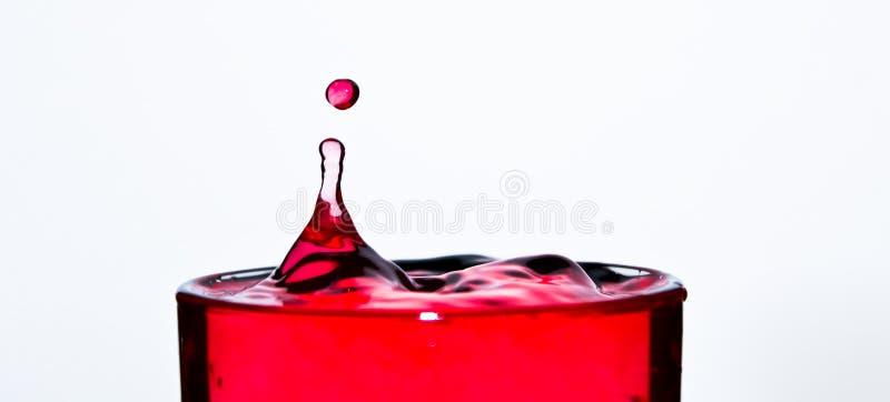 Rött bevattna tappar royaltyfria bilder