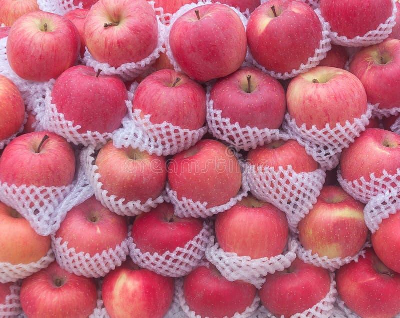 rött fuji äpple fotografering för bildbyråer