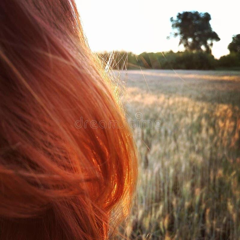 Rött hår arkivbilder