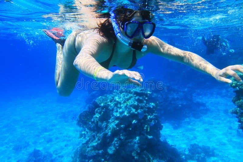 rött hav som snorkeling fotografering för bildbyråer