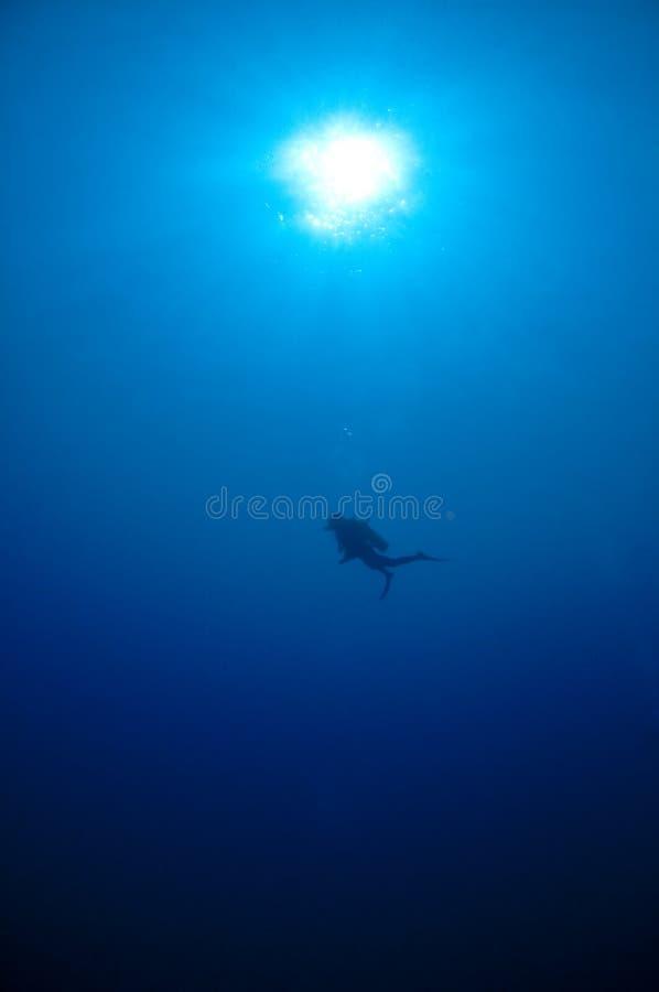 rött hav sudan för blå dykare royaltyfri fotografi