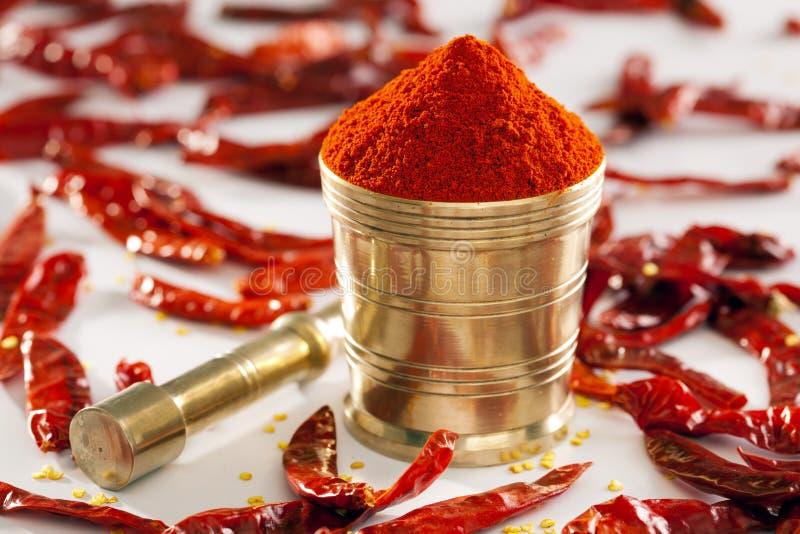 Rött kyligt pulver. royaltyfri foto
