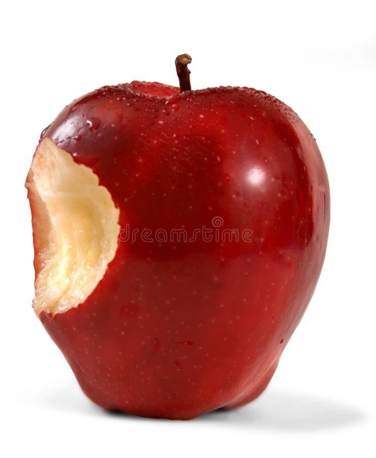 Rött - läckra Apple royaltyfria bilder