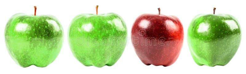 Rött - läckra Apple bland gröna äpplen royaltyfria foton