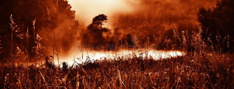 Rött löst romantiskt morgonlandskap med dimma, floden och gräs arkivbild