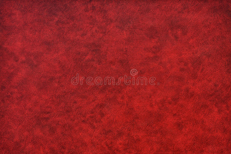 rött livligt för svart läder royaltyfri fotografi