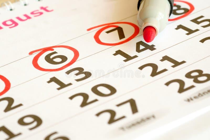 R?tt markerade p? en kalender arkivfoto