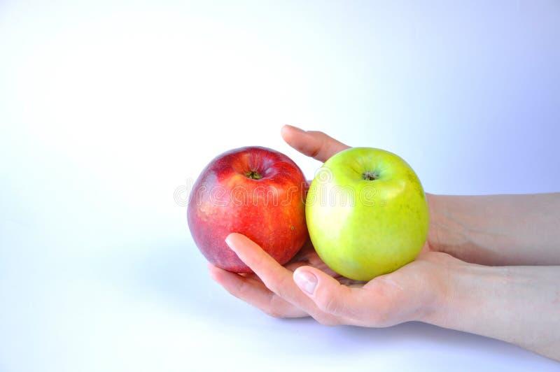 Rött och grönt äpple i händer på vit bakgrund arkivbilder